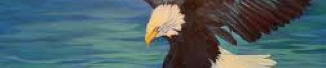 cropped-eagle-drawing.jpg